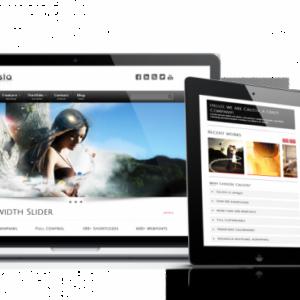 portfolio1-600x370